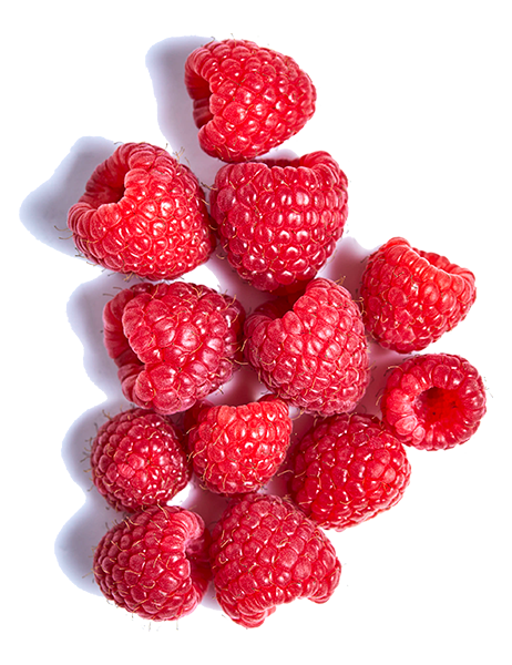 raspberry-individualLG2